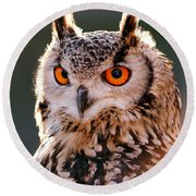 Backlit Eagle Owl Round Beach Towel by Roeselien Raimond