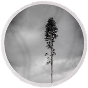 Lone Tree Landscape  Round Beach Towel