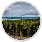 Logging Road Landscape Round Beach Towel