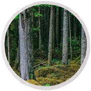 Inside View Backroad Forest Round Beach Towel