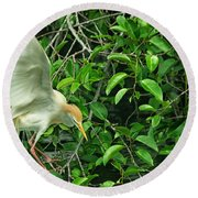 Round Beach Towel featuring the photograph Balancing Act by Dennis Baswell
