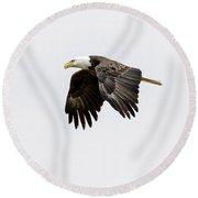 Bald Eagle 3 Round Beach Towel