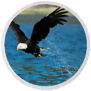 Round Beach Towel featuring the photograph Bald Eagle Fishing by Don Schwartz