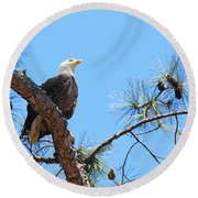 Round Beach Towel featuring the photograph Bald Eagle by Geraldine DeBoer