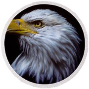 Bald Eagle Round Beach Towel by Jeff Goulden