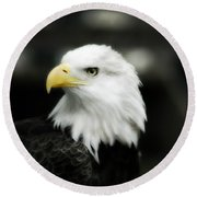Round Beach Towel featuring the photograph Bald Eagle by Peggy Franz