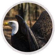 Bald Eagle Preparing For Flight Round Beach Towel by Chris Flees