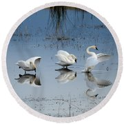 Dance Of The Trumpeters Round Beach Towel