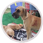 Bama Great Dane Round Beach Towel