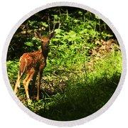 Bambi Round Beach Towel by Melissa Petrey