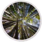 Round Beach Towel featuring the digital art Bamboo Jungle by Gandz Photography
