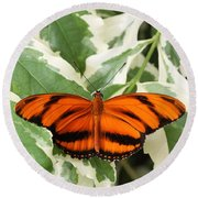 Banded Orange Longwing Butterfly Round Beach Towel by Judy Whitton