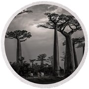 Baobab Highway Round Beach Towel