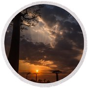 Baobab Sunrays Round Beach Towel