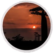 Baobab Sunrise Round Beach Towel