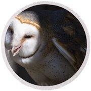 Barn Owl 1 Round Beach Towel