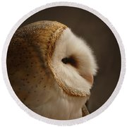 Barn Owl 3 Round Beach Towel