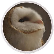 Barn Owl 4 Round Beach Towel