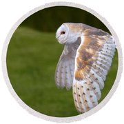 Round Beach Towel featuring the photograph Barn Owl In Flight by Nick  Biemans