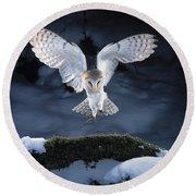 Barn Owl Landing Round Beach Towel
