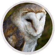 Barn Owl Round Beach Towel by Scott Carruthers