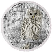 Barred Owl Snowy Day In The Forest Round Beach Towel