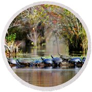 Round Beach Towel featuring the photograph Basking Turtles by Kelly Nowak