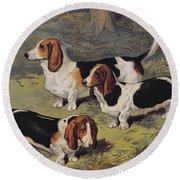 Basset Hounds Round Beach Towel