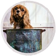 Bath Time - King Charles Spaniel Round Beach Towel