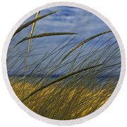 Beach Grass On A Sand Dune At Glen Arbor Michigan Round Beach Towel
