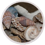 Round Beach Towel featuring the photograph Beach Shells 2 by WB Johnston