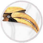 Beak Of Great Hornbill Buceros Bicornis Round Beach Towel by Steve Gorton / Dorling Kindersley