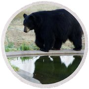 Bear 2 Round Beach Towel