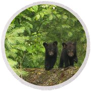 Round Beach Towel featuring the photograph Bear Buddies by Coby Cooper