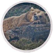 Bear On A Log Round Beach Towel