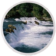 Bears Fish Brooks Fall Katmai Ak Round Beach Towel