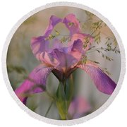 Beautiful And Mystical Iris  Round Beach Towel