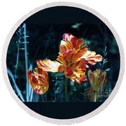 Round Beach Towel featuring the photograph Gorgeous Tulip by Phyllis Kaltenbach