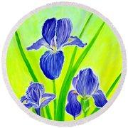 Beautiful Iris Flowers Card Round Beach Towel