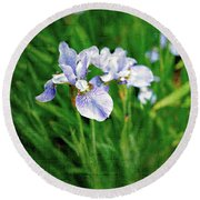 Beautiful Louisiana Hybrid Iris Round Beach Towel