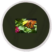 Beautiful Monarch Butterfly Round Beach Towel