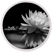Beautiful Water Lily Reflections Round Beach Towel