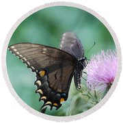 Beauty And Thistle Round Beach Towel by Eric Liller