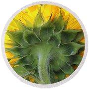 Beauty Everywhere - Sunflower Round Beach Towel by Dora Sofia Caputo Photographic Art and Design