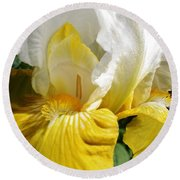 Round Beach Towel featuring the photograph Beauty For The Eye by Bruce Bley