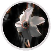 Round Beach Towel featuring the photograph Beauty In The Woods by Sherman Perry