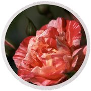 Round Beach Towel featuring the photograph Beauty Of Rose by Joy Watson