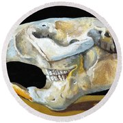 Beaver Skull 1 Round Beach Towel by Catherine Twomey