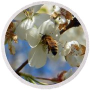 Bee And Pear Blooms Round Beach Towel