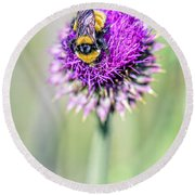 Bee And Purple Thistle Round Beach Towel